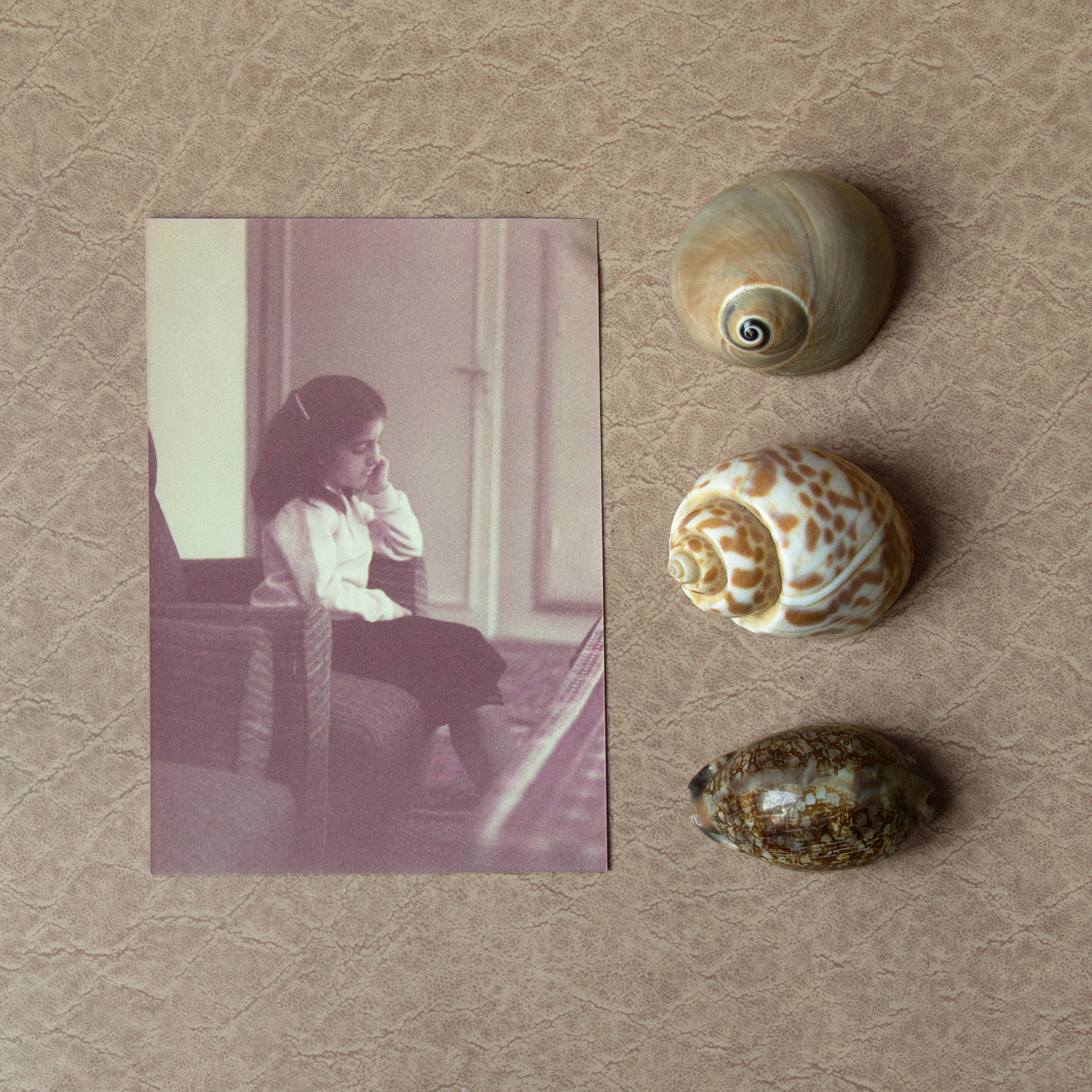 Vintage Image with Shells on the Side
