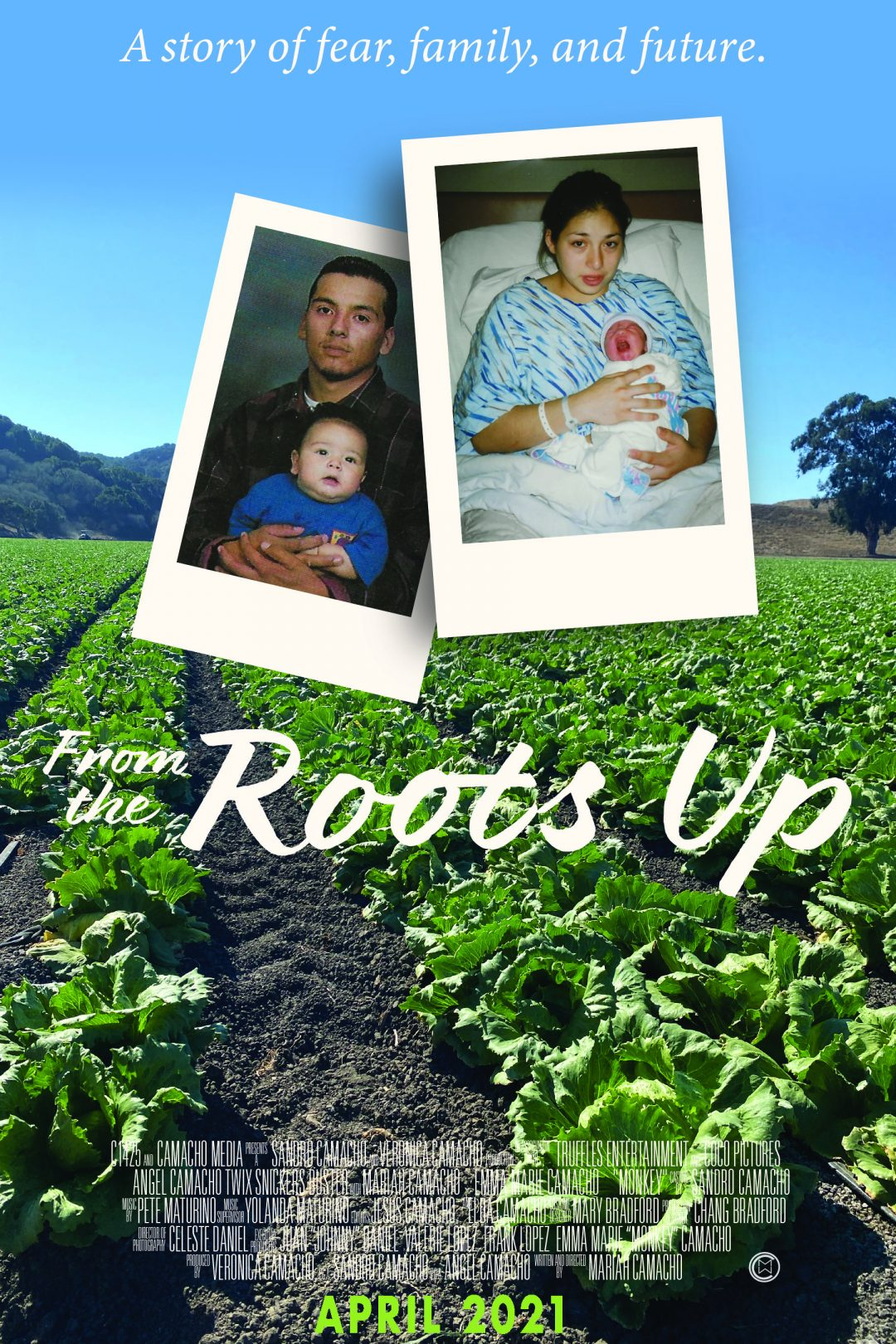 From the Roots Up